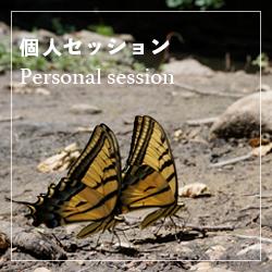 個人セッション